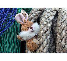 Bunny says Hi............. Photographic Print