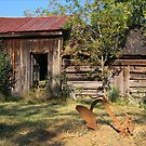 Slave Cabin by Patricia Montgomery
