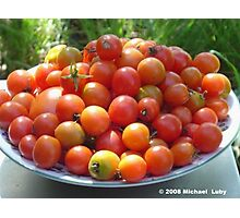 Tomato Time Photographic Print