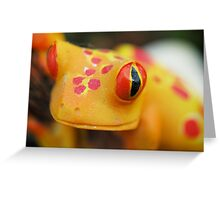 Plastic Froggy Greeting Card