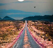 Road Less Traveled by Adam Asar