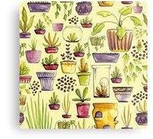 Indoor Plants and Pots Metal Print
