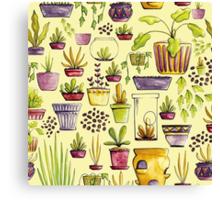 Indoor Plants and Pots Canvas Print
