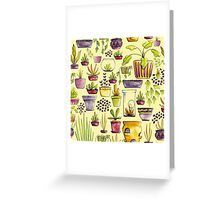 Indoor Plants and Pots Greeting Card