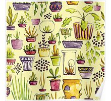 Indoor Plants and Pots Poster