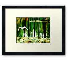 Afternoon relections Framed Print