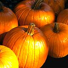 Pumpkin Pie by Mary Campbell
