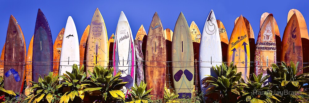 Where Old Surfboards Go.... by Randy Jay Braun