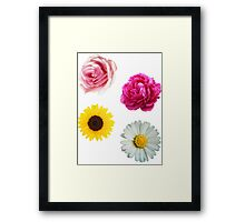 Flowers Set Framed Print