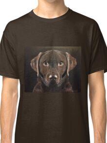 Chocolate Labrador, Faithful Friend Classic T-Shirt