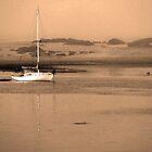 Dawn on Moro Bay sand banks, California. by Paul Bailey