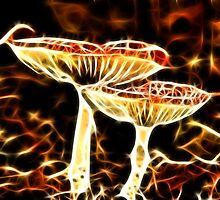 Flaming Season by Jo Nijenhuis