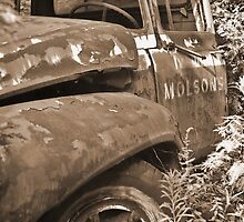 Molsons by ajnphotography