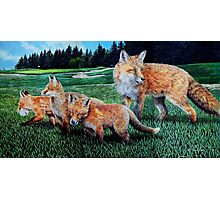 A Sly Foursome On The Fairway Photographic Print