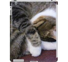 A Sleeping TJ iPad Case/Skin