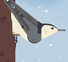 White Breasted Nuthatch by TLCampbell
