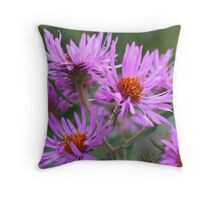 Pink Asters Throw Pillow