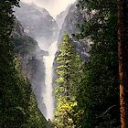 Yosemite Falls in May by Robert Woods