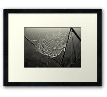 Pearl Catcher Framed Print
