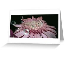 Midnight Blossom Greeting Card