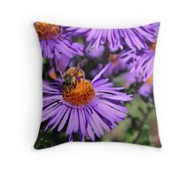 Bee On Purple Aster Throw Pillow
