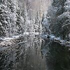 Merced River in Winter by Robert Woods