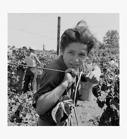 An American Boy  by Dorothea Lange Photographic Print