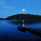 Moonrise by Jane Best