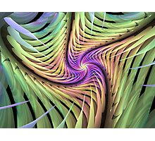 Edged Spiral Photographic Print