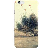 landscape 03 iPhone Case/Skin