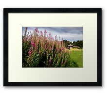 Summer WAS here - Old Winchester Hill, Hampshire Framed Print