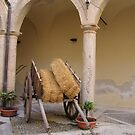 Sicilian Carriage by Rosy Kueng