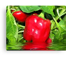 Big Red Bell Canvas Print