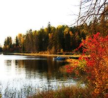 A Day at the Lake by Vickie Emms