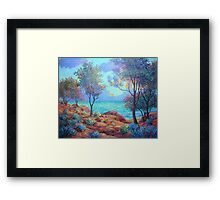 Rocky Coast Framed Print