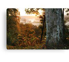 The autumn fog (LITHUANIA) Canvas Print