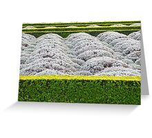 Lavender Waves Greeting Card
