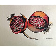 Pomegranate. Pen and wash 2012 Photographic Print