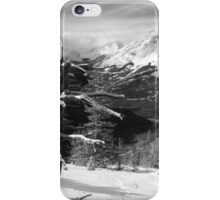 Elevated views iPhone Case/Skin