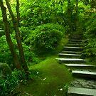 The Steps to Nirvana by failingjune