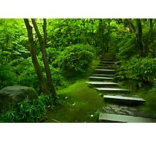 The Steps to Nirvana Photographic Print