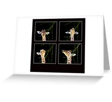 Baby Giraffe Composite Greeting Card