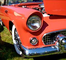 1955 Thunder Bird Classic by Jack McCabe