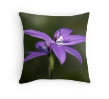 Glossodia Major - Wax Lip Orchids - Mt Barker Summit Throw Pillow