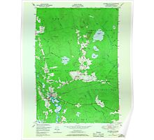 Maine USGS Historical Map Columbia Falls 806614 1948 24000 Poster