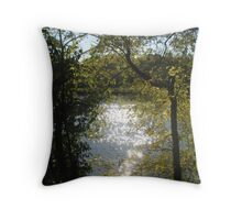 Touch of Glimmer Throw Pillow