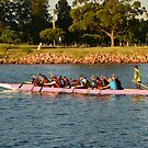 NEWCASTLE HUNTER DRAGON BOAT CLUB by Phil Woodman