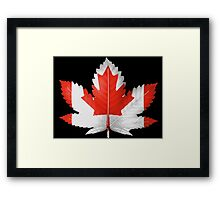 Cannadis leaf. Framed Print