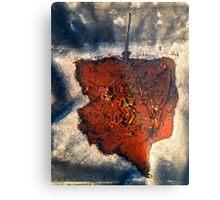 Leaf after the Post-mortem Metal Print