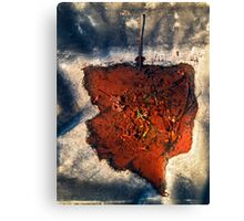 Leaf after the Post-mortem Canvas Print
